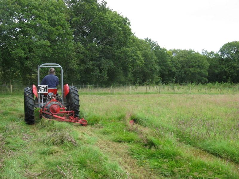 DIY Meadow Management - Hay Making at Ffos y Broga, 2015 (1/6)