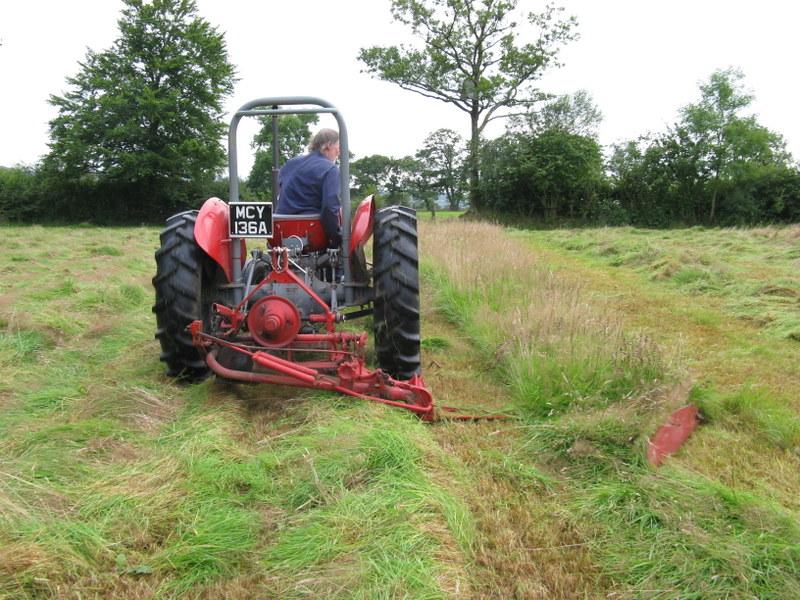 DIY Meadow Management - Hay Making at Ffos y Broga, 2015 (3/6)