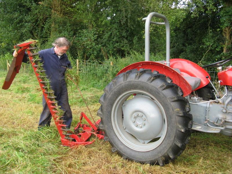 DIY Meadow Management - Hay Making at Ffos y Broga, 2015 (4/6)
