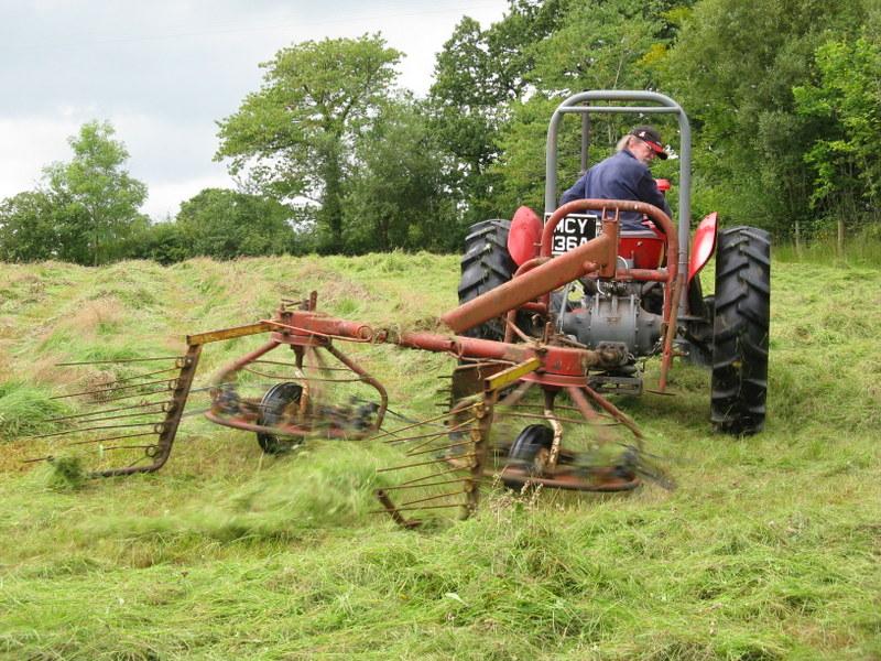 DIY Meadow Management - Hay Making at Ffos y Broga, 2015 (6/6)