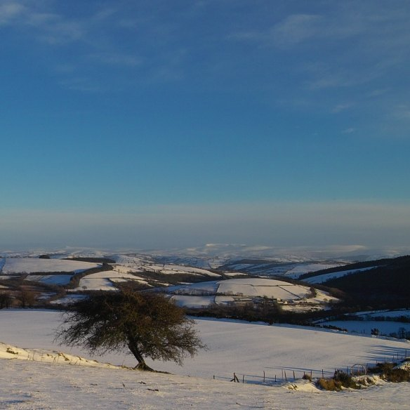 carmarthenshire-landscape-1