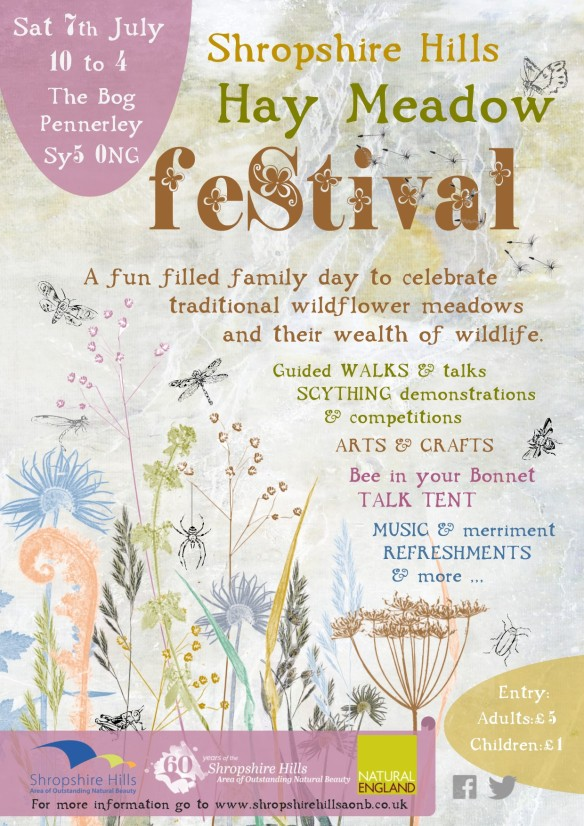 aonb hay meadow festival_POSTER_FINAL-email
