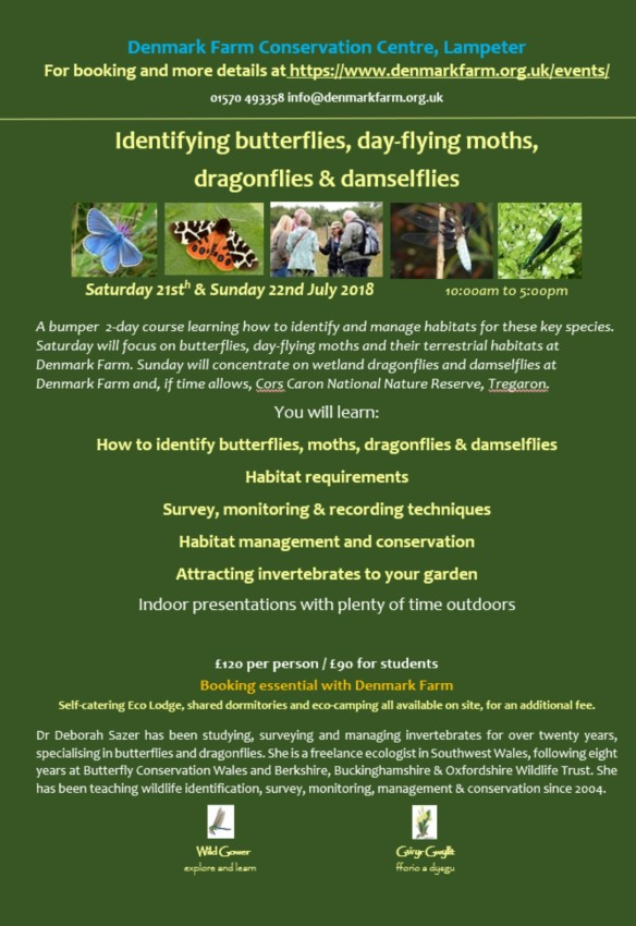 DF bf dg poster (1)
