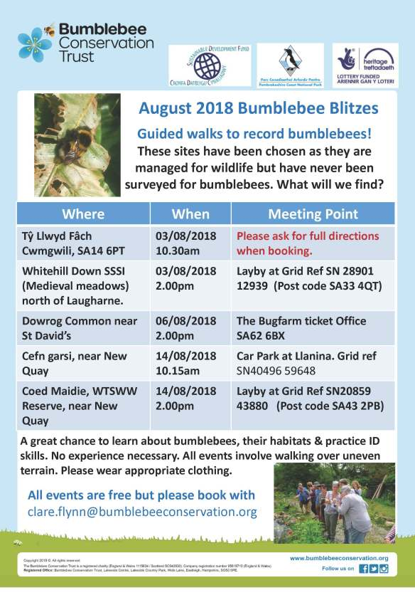 Bee Surveys August2018 (1)