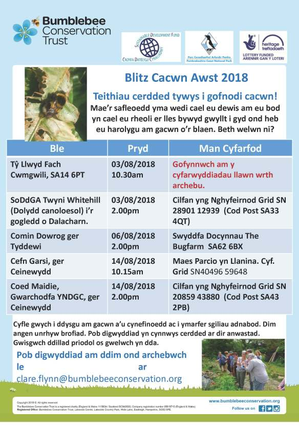 Bee Surveys August2018Welsh (1)