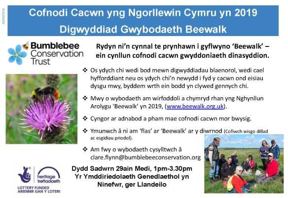 Beewalk event Poster Dinefwr WELSH