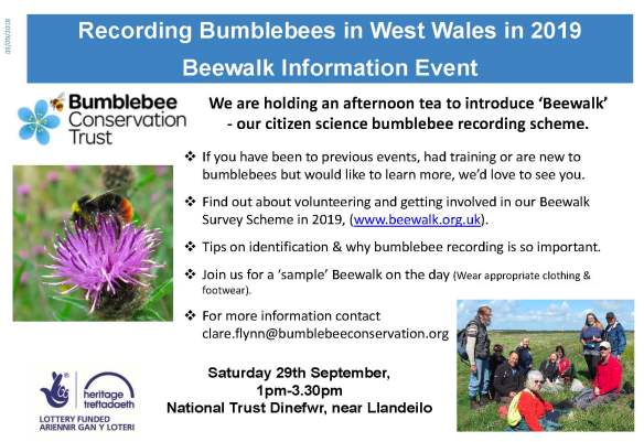 Beewalk event Poster Dinefwr